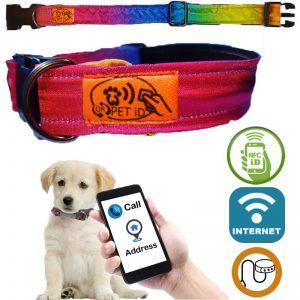 Rainbow WeB SNQiT Collar