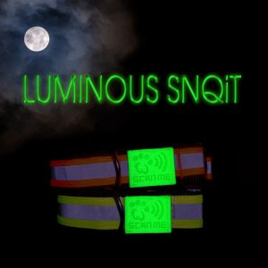 Luminous SNQiT Dog Collar