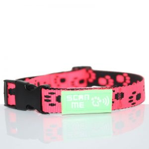 Glow in Dark Pink Collar+SNQiT