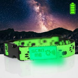 Glow in Dark Green Collar+SNQiT