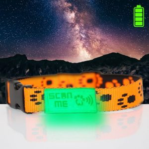 Glow in Dark Orange Collar+SNQiT